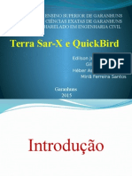 Terra Sar-X e Quick Bird