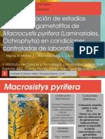 presentacionecologiamarina.ppt