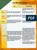 PMI vs Metodologia Agil.pptx