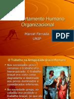 Comportamento Humano Organizacional