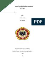 Manajemen Stratejik Dan Kepemimpinan - CT Corp
