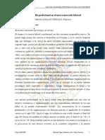 Insercion y Desarrollo Profesional en El Nuevo Mercado Laboral. Topa y Palaci
