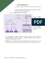 Guía Colombiana Sca