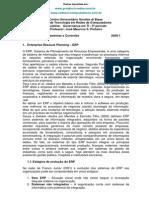 Governanca_erp Cobit e Itil 2009