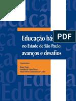 livro_fde_fseade_educacao_basica.pdf