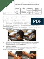 Testing Long Et Court Extenseur Radial Du Carpe