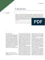Reeducacion Del Perineo