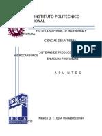 SISTEMAS DE PRODUCCION DE HIDROCARBUROS EN AGUAS PROFUNDAS.docx