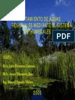 Modulo 11 Humedales Artificiales y Aguas Residuales Domesticas