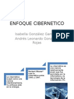 ENFOQUE-CIBERNETICO
