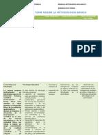 Modulo Investigacion Cómo elaborar tabla de vaciado de un proyecto