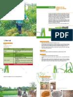 thiết lập hệ thống tưới để trồng cỏ chất lượng cao_Chương 2