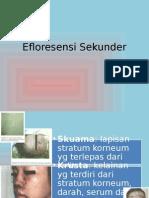 Efloresensi Sekunder (Wahyuni NRR -201083027)