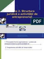 Structura Juridica a Activitatii de Antreprenoriat
