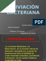 Lixiviación Bacteriana