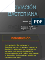 Lixiviación Bacteriana - Copia