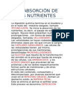 La Absorción de Los Nutrientes