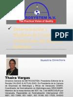 Sick Building Syndrome Presentation Metrosystems N.v Español