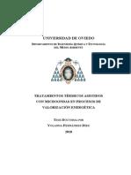 Tesis Doctoral 2010. Yolanda Fernández Díez.pdf