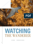 Watching the Wanderer