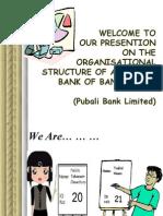 Pubali Bank - The Organizational Stracture
