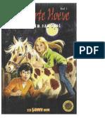De zwarte hoeve deel 1 het geheim van spot - een Penny boek.epub