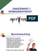 Irena Mitić - Menadžment i Konkurentnost