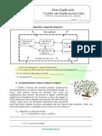 B.1 Teste Diagnóstico Ecossistemas 5