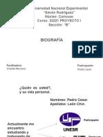Laminas de Biografía Personal (Pedro León)