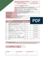 Protocolos de Ejemplos de Formatos de Acero