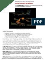 Estrategias de Tratamiento Con Los Puntos Shu Antiguos _ Medicina China Popular