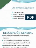 Mieloencefalitis Protozoica Equina