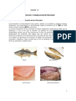 Tecnologia Frio Refrigeracion y Congelacion Pescado (8)