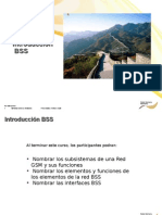 1.1 Bss Overview