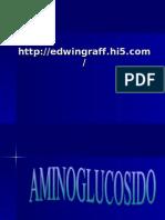 Aminoglucósido y Cloranfenicol