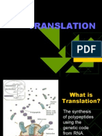 Translation from mRNA to Protein