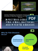 Microbial Fish Diseases 2011