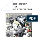Automobile Utilization Management