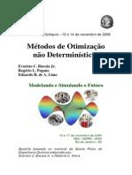 Apostila - Mini-curso otimizacao.pdf