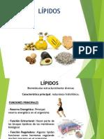 LIPIDOS (Quimica)