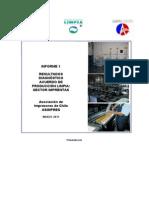 Informe Resujsjjfdaskfcsltados Diagnostico Inicial APL Imprentas