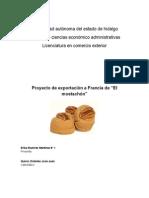 Proyectoel mostachon (1)