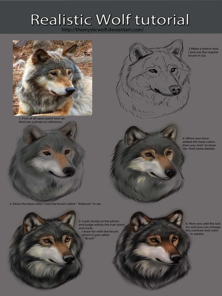 Tutorial Desenho Lobo Realista