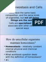 7.4 homeostasis