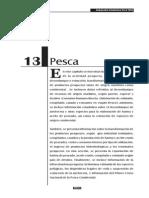 PESCA ESTADISTICAS.pdf