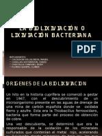 Lixiviacion Bacteriana Expo