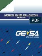 Informe de Revision Junio 2014 Definitivo