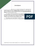 FSA Assignment, Financial Analysis Statement