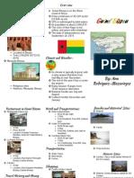 anas brochure   guine bissau - google docs
