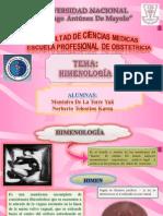 Himenologia
